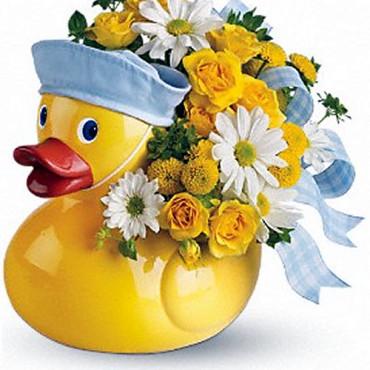 Baby_Flowers_Ducky_Delight_Boy_T34-3A_33_Lougheed_Flowers_Florists_Sudbury