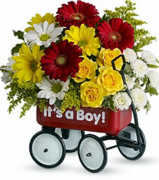 Baby's Wow Wagon – Boy