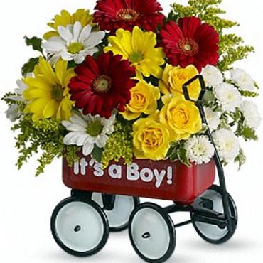 Baby_Flowers_Wow_Wagon_Boy_T35-1A_28_Lougheed_Flowers_Florists_Sudbury