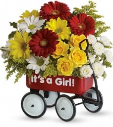 Baby's Wow Wagon – Girl