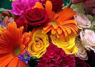 Designers_Choice_Lougheed_Flowers_Sudbury_Florist_Sudbury2