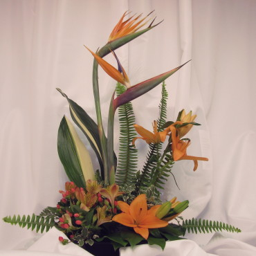 Exotic_Flowers_Exotic_Grace_T77-1A_21_Lougheed_Flowers_Florists_Sudbury2