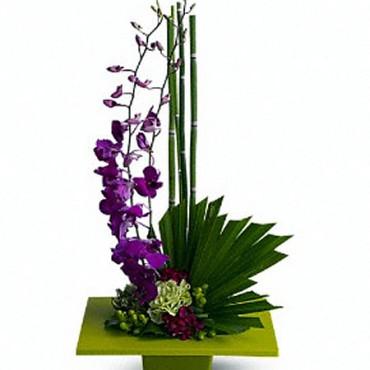 Exotic_Flowers_Zen_Artistry_T81-1A-22_Lougheed_Flowers_Florist_Sudbury