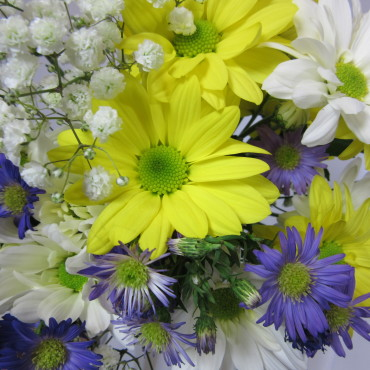 Fresh_Cut_Flowers_A_Daisy_A_Day_Lougheed_Flowers_Florist_Sudbury