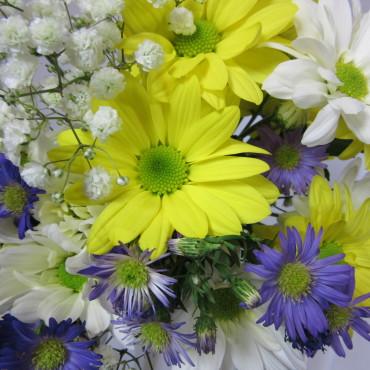 Fresh_Cut_Flowers_A_Daisy_A_Day_Lougheed_Flowers_Florist_Sudbury
