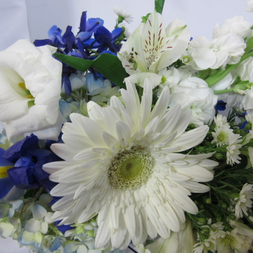 Fresh_Cut_Flowers_Blue-Horizon_Lougheed_Flowers_Florist_Sudbury