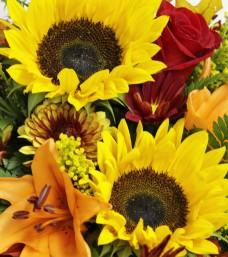 """""""Fabulous Fall"""" Cut Flowers"""