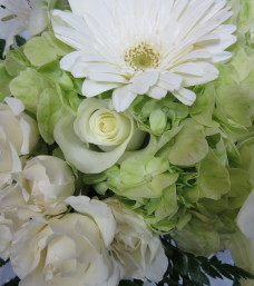 """""""Green with Envy"""" Cut Flowers"""