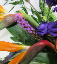 """Hot Tropics"" Cut Flowers"