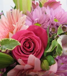 """Pink to the Max"" Cut Flowers"