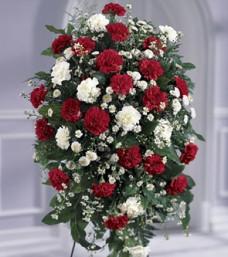 Crimson White Tribute