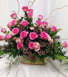 Peaceful Pink Roses