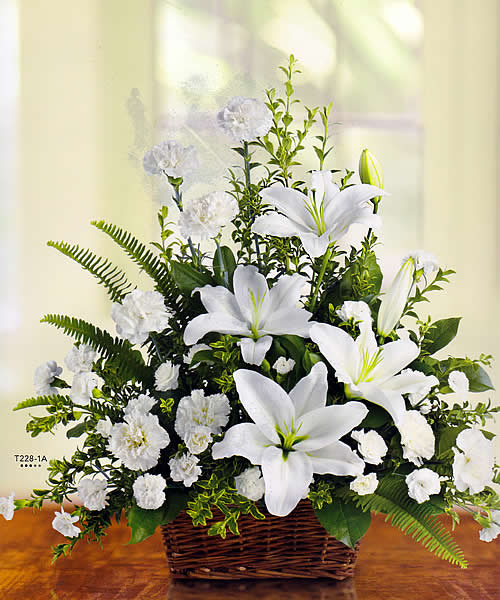 peaceful white lilies   sudbury flower delivery l lougheed