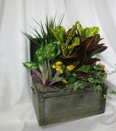 Planter Basket/Chest