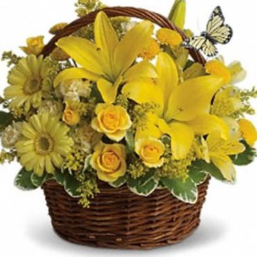 Plant_Hanging_Basket_basket_full_of_wishes_Lougheed_Flowers_Florist_Sudbury