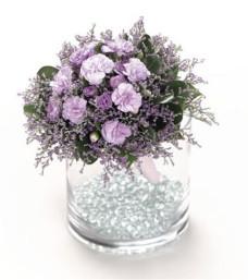 Lavender Affection