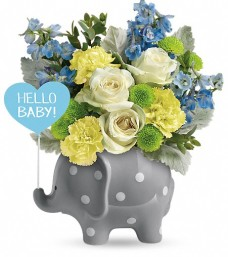 Teleflora's Hello Baby Elephant Boy
