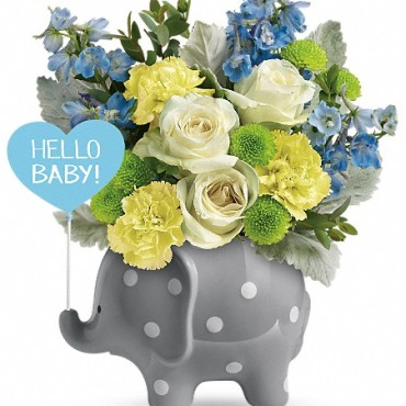 Teleflora's Hello Baby Boy Image Elephant