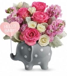 Teleflora's Hello Baby Elephant Girl