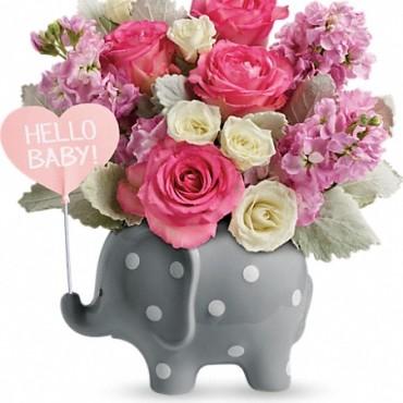 Teleflora's Hello Baby Girl Image Elephant